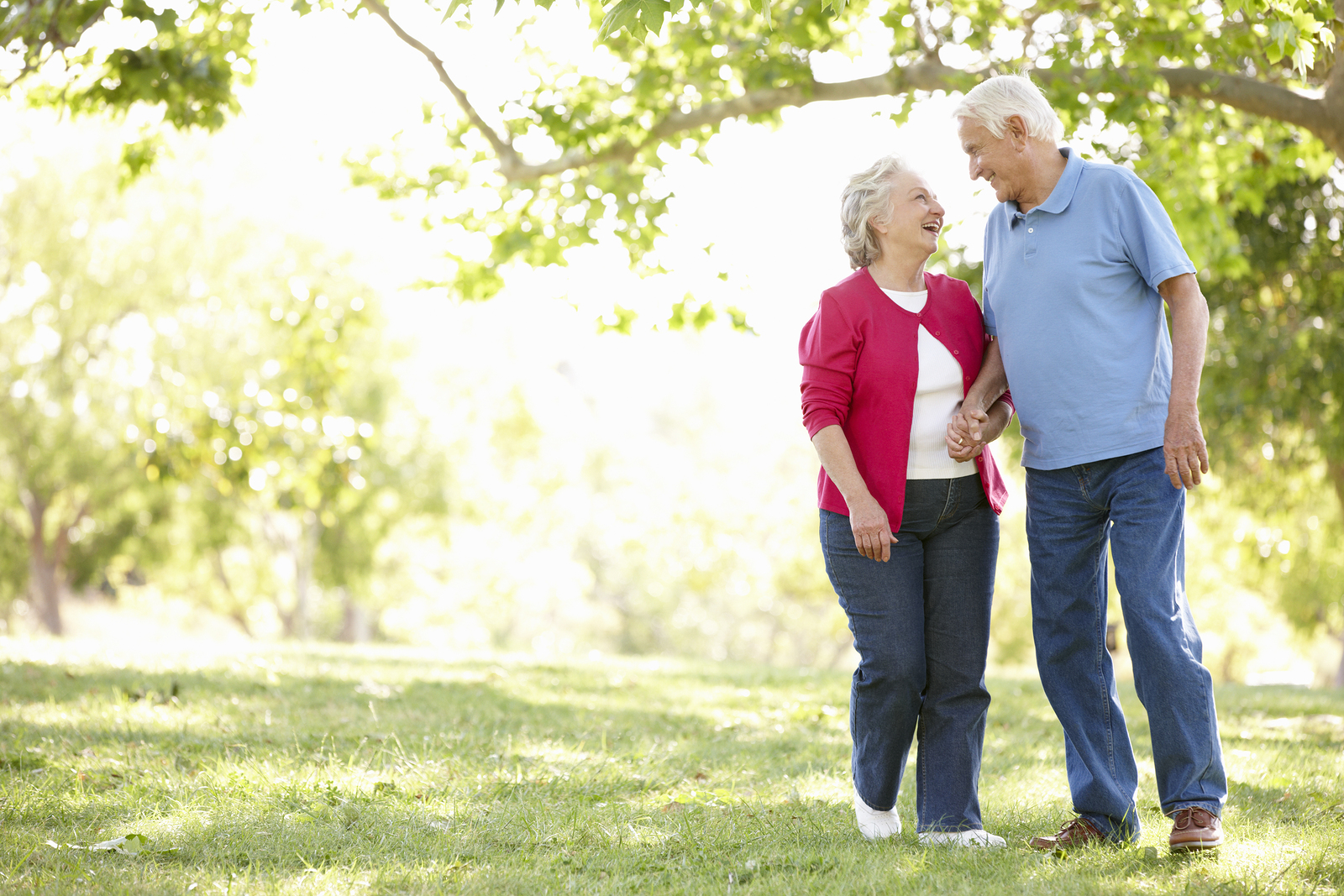 Elderly couple holding hands walking through a park