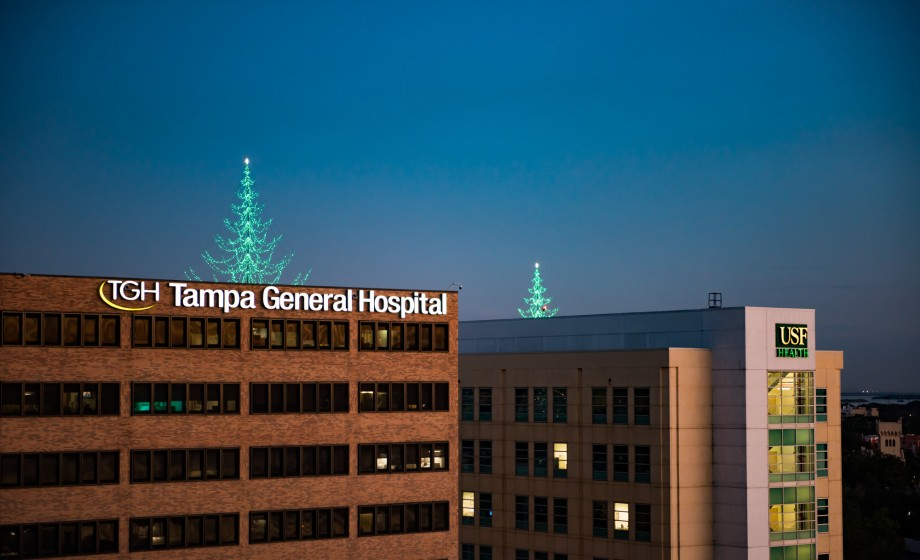 Light up tree above Tampa General Hospital