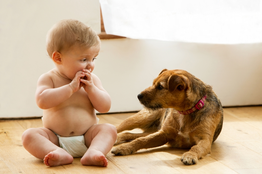 Baby sitting with a puppy