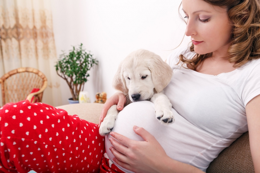 Pregnant woman with puppy