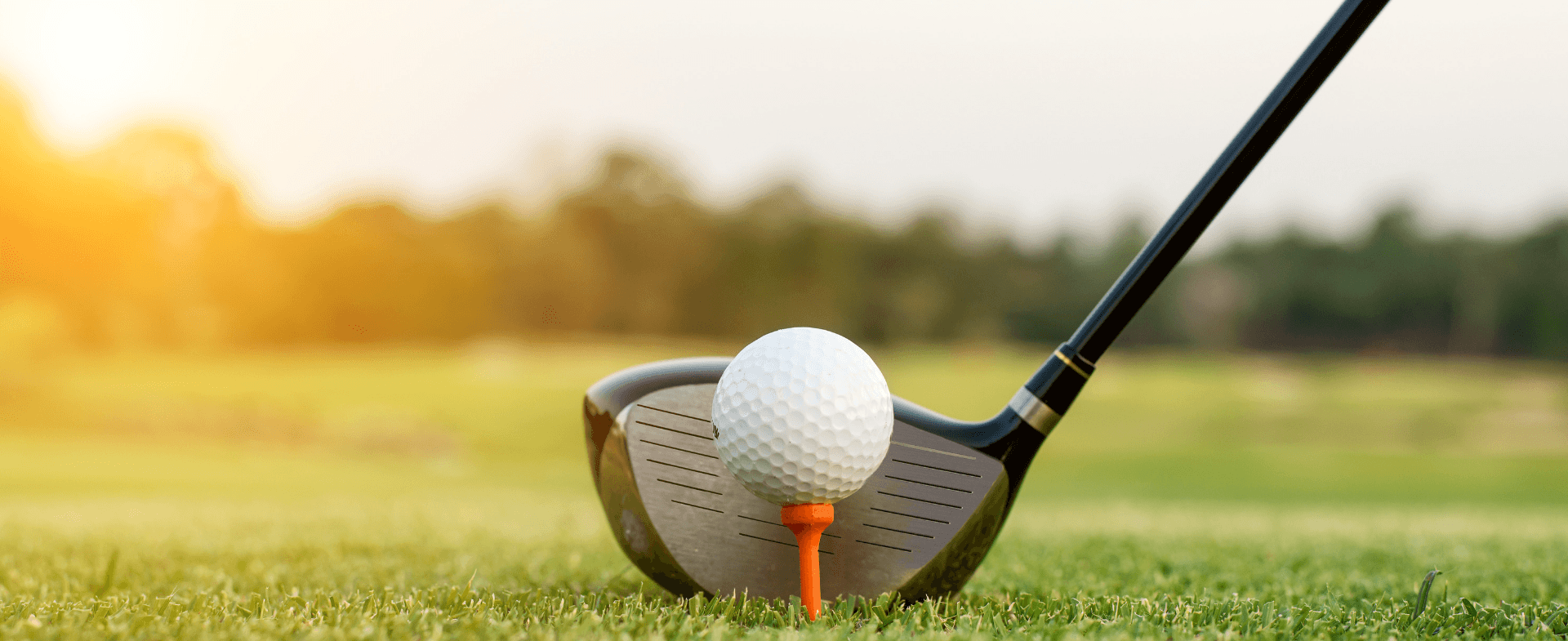 Golf Ball on Tee on Grass